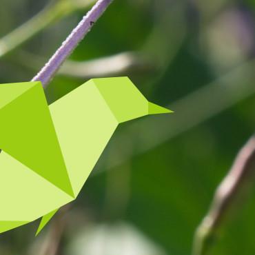 Landwirtschaft für die Artenvielfalt – WWF
